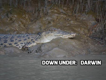 Down Under: 'Darwin'