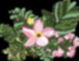 Floral Image.png