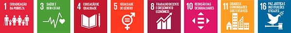 O Nosso Instituto apoia e colabora com os 17 Objetivos de Desenvolvimento Sustentável e 169 metas da ONU. Eles se constroem sobre o legado dos Objetivos de Desenvolvimento do Milênio e concluirão o que estes não conseguiram alcançar. Eles buscam concretizar os direitos humanos de todos e alcançar a igualdade de gênero e o empoderamento das mulheres e meninas. Eles são integrados e indivisíveis, e equilibram as três dimensões do desenvolvimento sustentável: a econômica, a social e a ambiental.