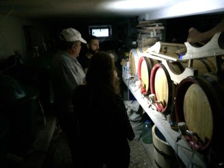 The Underground Cellar at Casa Elvira