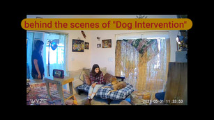 _behind_the_scenes_of_dog_intervention_4K_HIGH_FR30.mp4