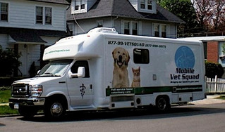 Mobile Vet Squad - The Word on the Street