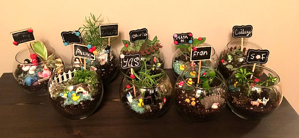 Terrriums from children's birthday party