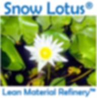 SnowLotusNatural.PNG