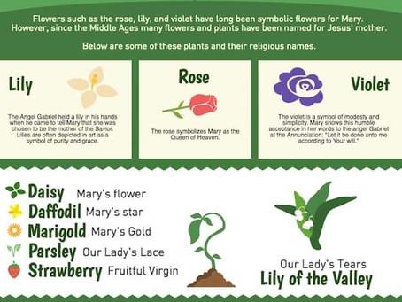 How to create a Mary garden
