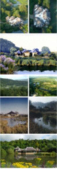 Arundel Wetlands