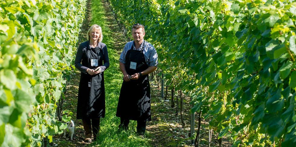 Raimes vineyard