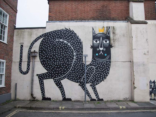 Design Collective Chichester speaks out about The King of Cats!