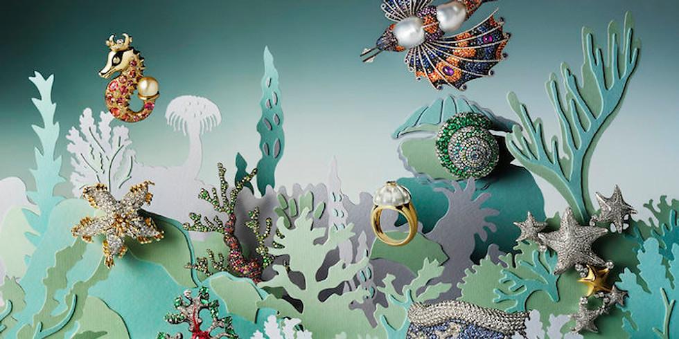 Illustration - Helen Friel
