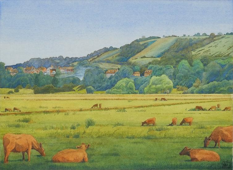 Across the Wildbrooks Towards Amberley