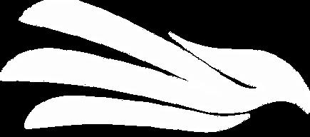 aguia branca semi apagada.png