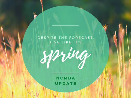 Spring (...well, almost) Update