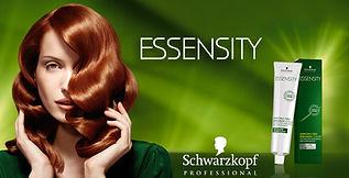 Essensity-banner_edited.jpg