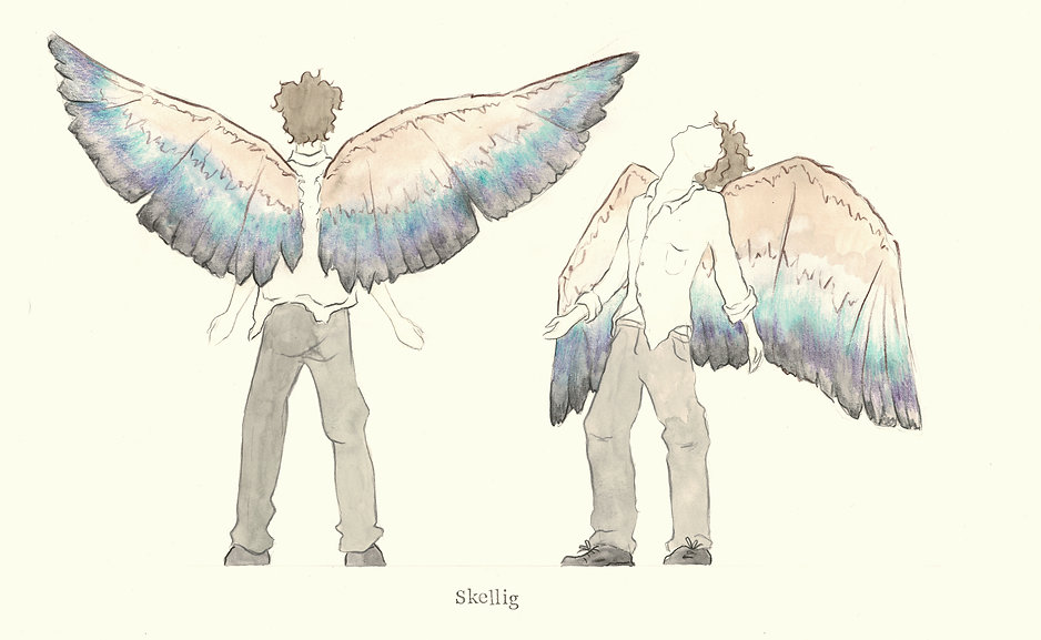 Skellig Wings.jpeg