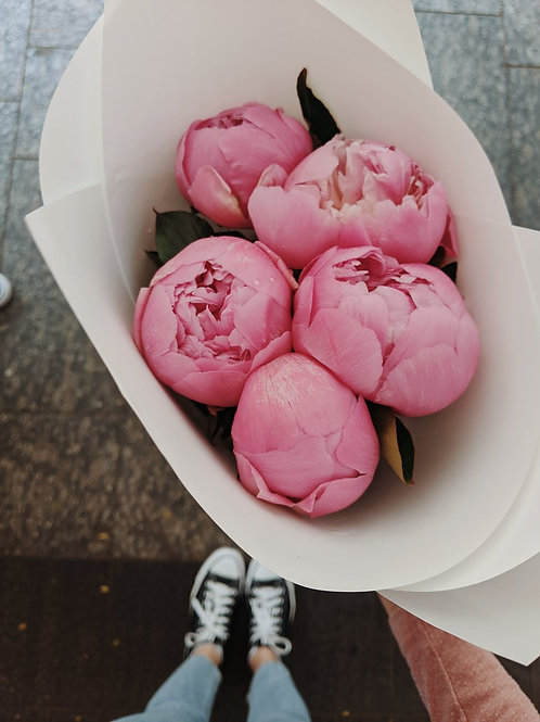 Passionate about Peonies
