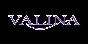 valina%20logo_edited.png