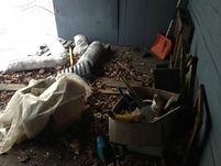 junk removal company tampa
