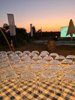פסטיבל סרטים ויין ביקב מישר 2021