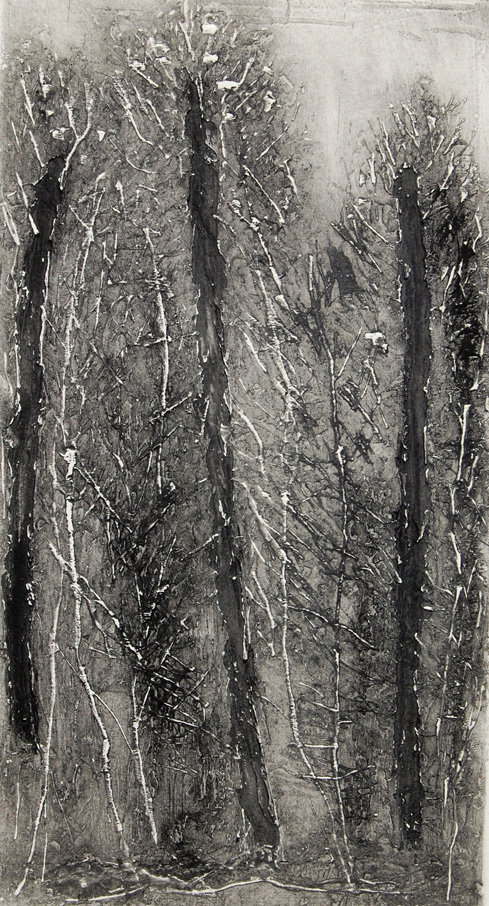 « Selva Oscura I » 2011