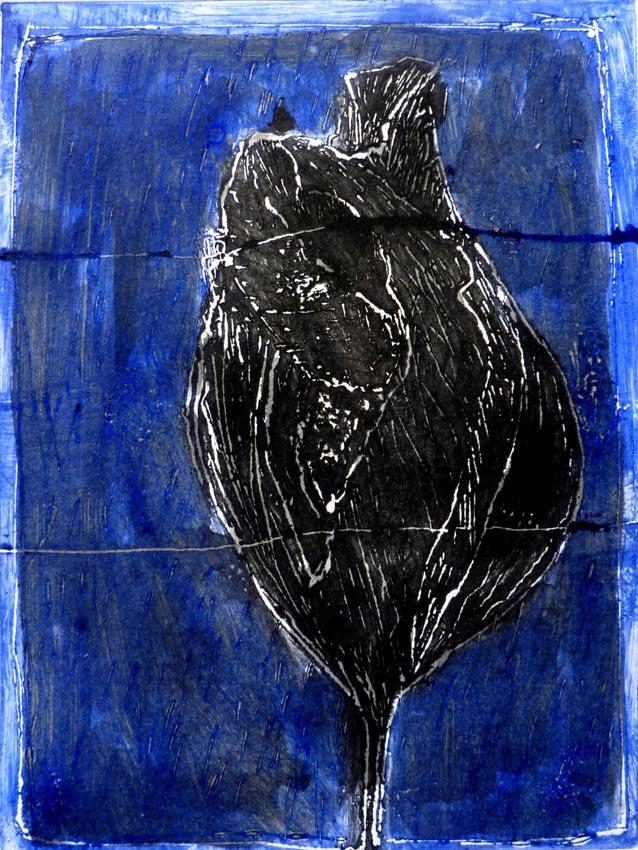 « Tulipe de la nuit » 2010