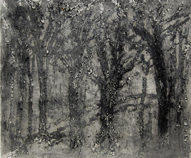 « Selva Oscura- 2 » 2012