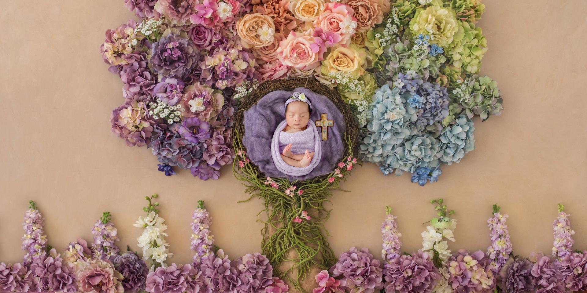 Newborn Photoraphy