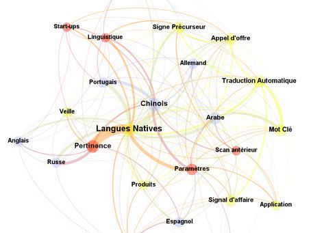 Exposé à l'international, pourquoi est-il important de mener votre #veille en #languesnatives ?