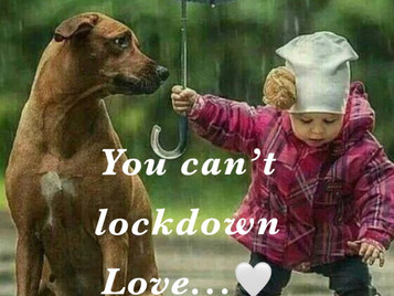 You can't lockdown Love... ever ❤️  THIS IS IT...