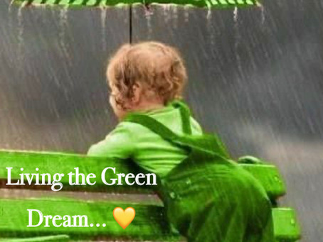 Creating Your Green Dream