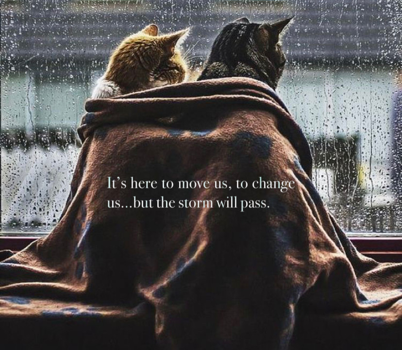 Its here to move us, to change us... but the storm will pass