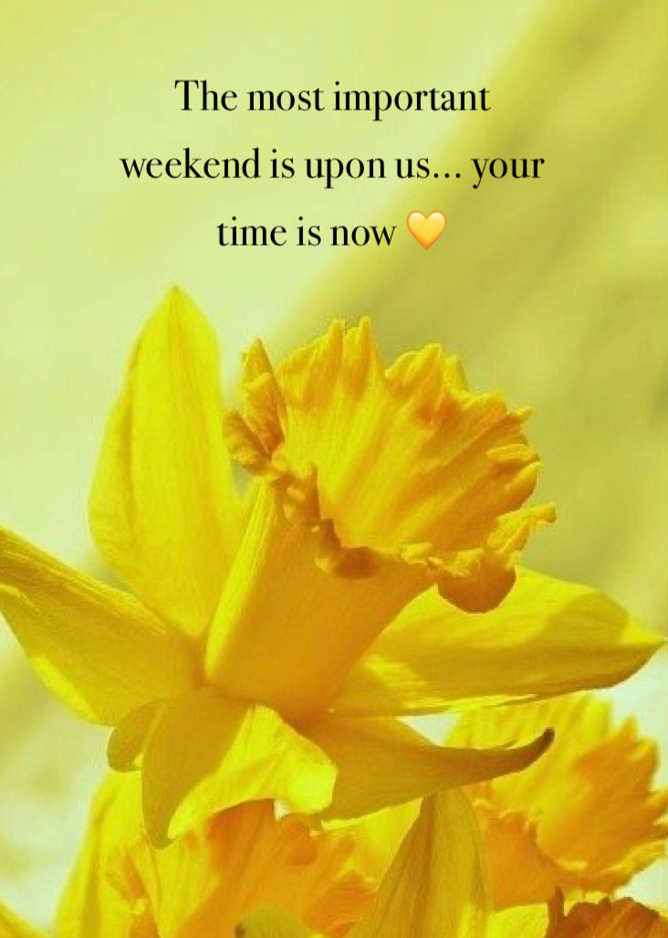 Picture of Dafodile with words The Most Important Weekend is Upon Us... Your Time is Now.