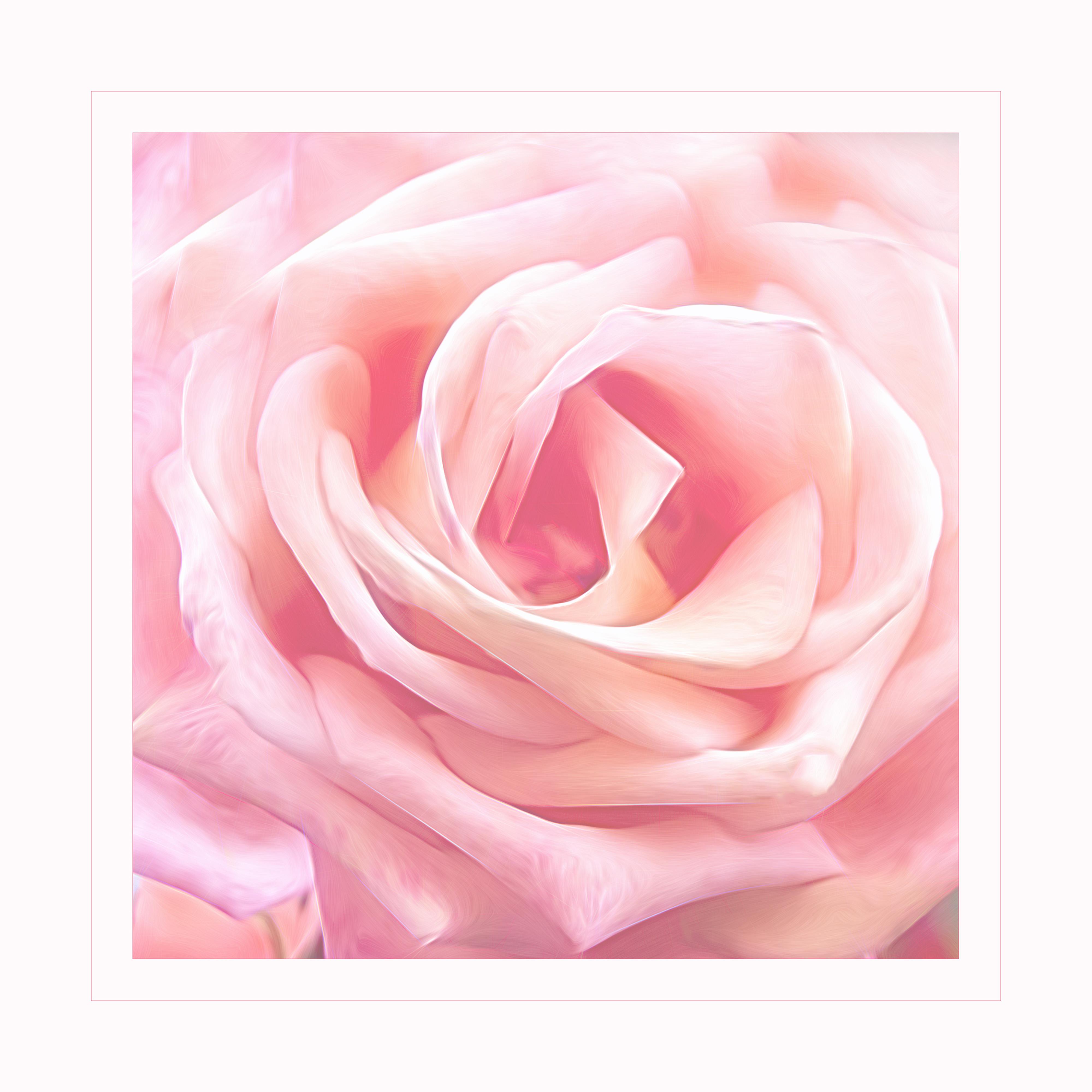 Pink_velvet
