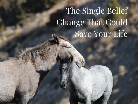 The Single Belief Change that Could Save Your Life