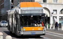 """Corsie bus, Federconsumatori: """"Prima sentenza positiva"""""""