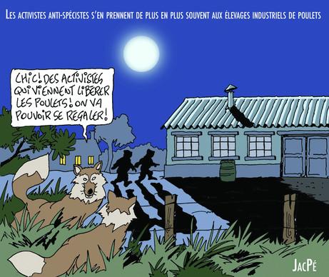 3c-poulets-activistes-anti-specistes.jpg