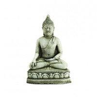 Ex Med Bronze Buddha