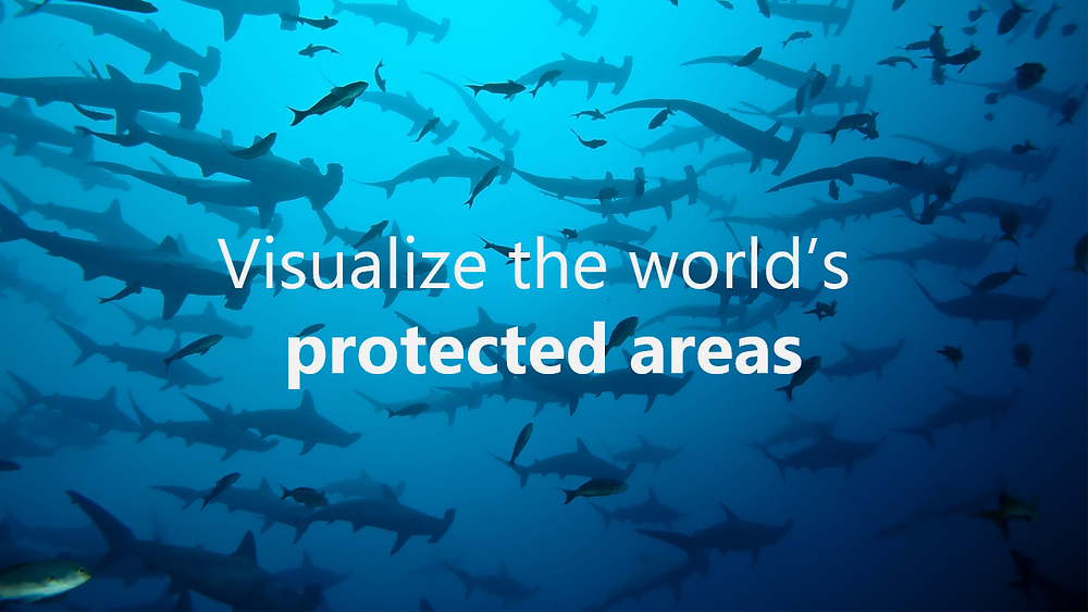 Visualize the world's protected areas