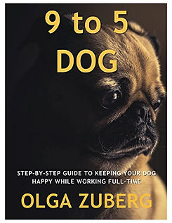 9 to 5 Dog Book Cover