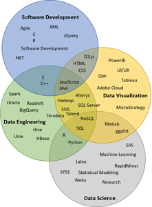 Data Visualization roles and skills