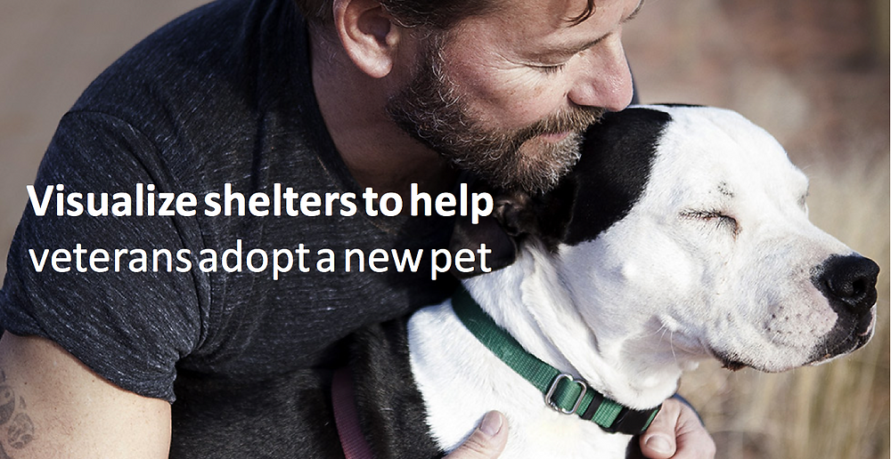 Visualize shelters to help military veterans adopt a new pet