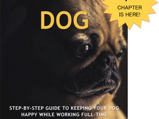 Announcing the first chapter of 9 to 5 Dog : Should I get a dog?