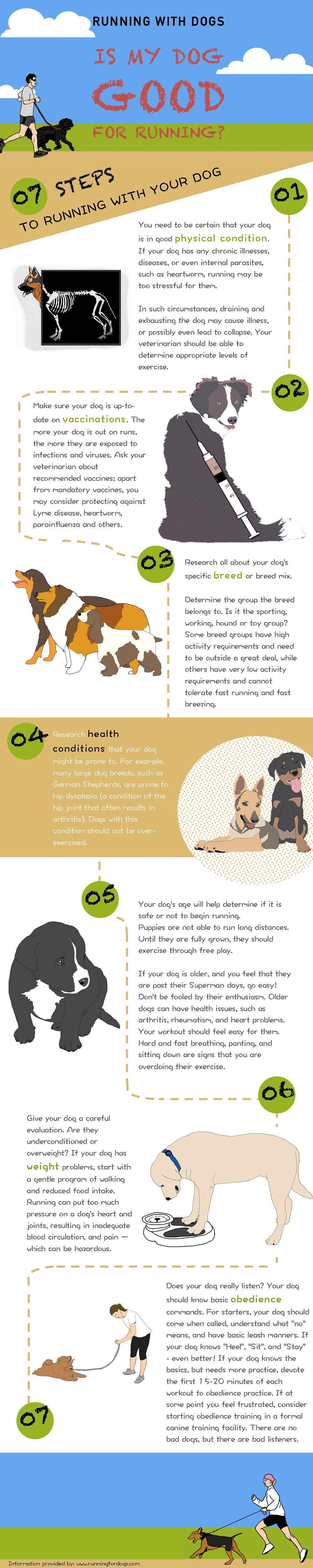 unning with dogs: Is my dog good for running? (Infographic)