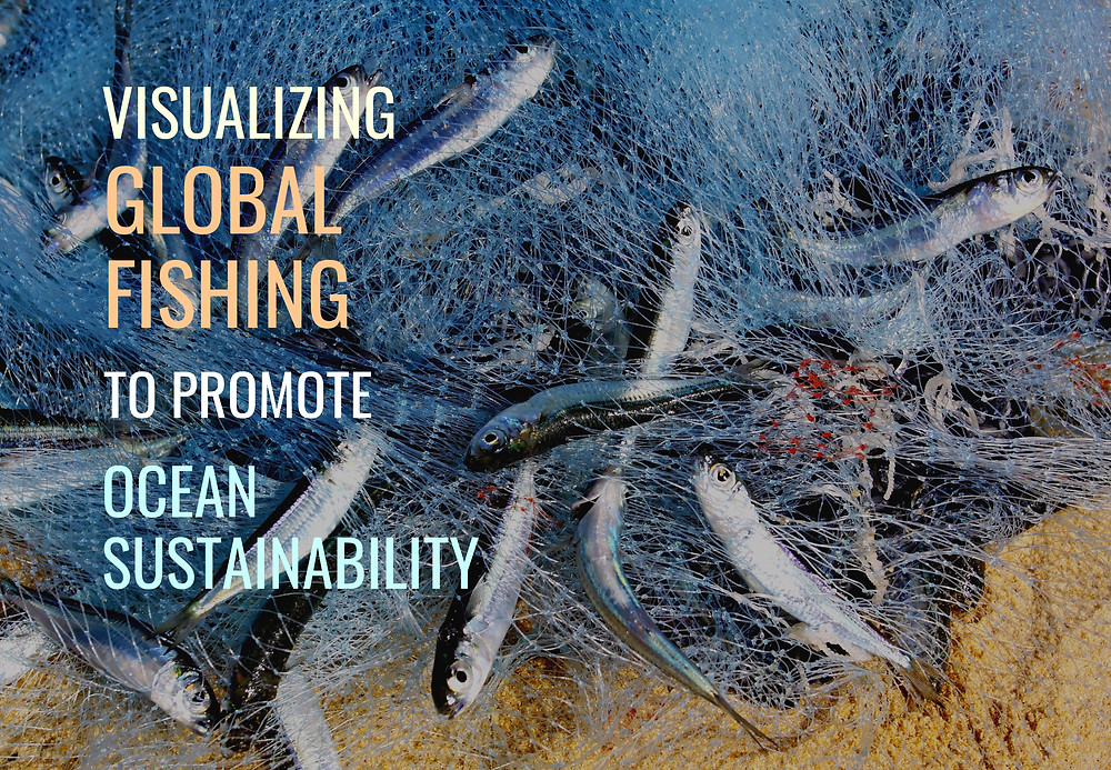Data for a Cause - Visualizing global fishing to promote ocean sustainability