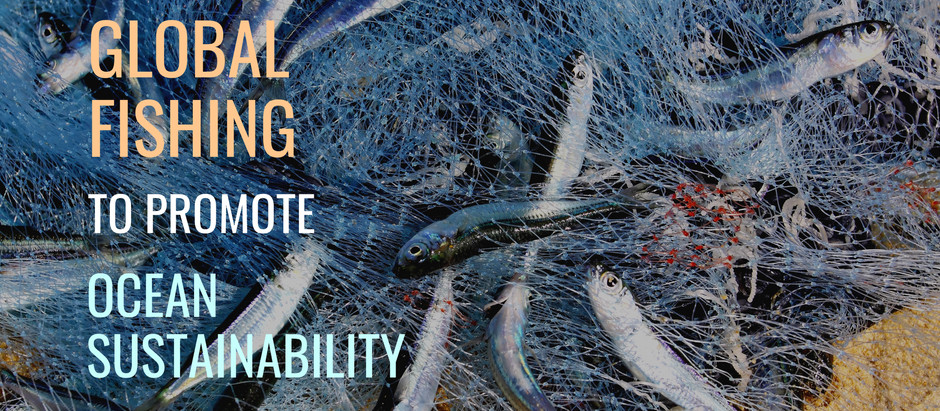 Visualizing global fishing to promote ocean sustainability