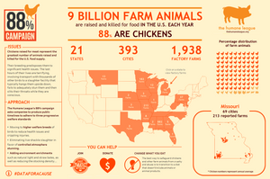 Data for a Cause - Chicken Factory Farms by  Kizley Benedict