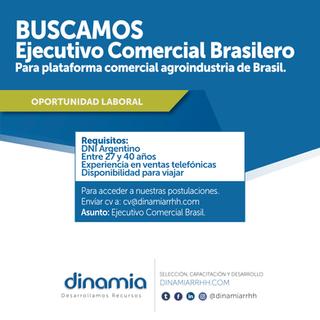 Ejecutivo comercial Brasilero