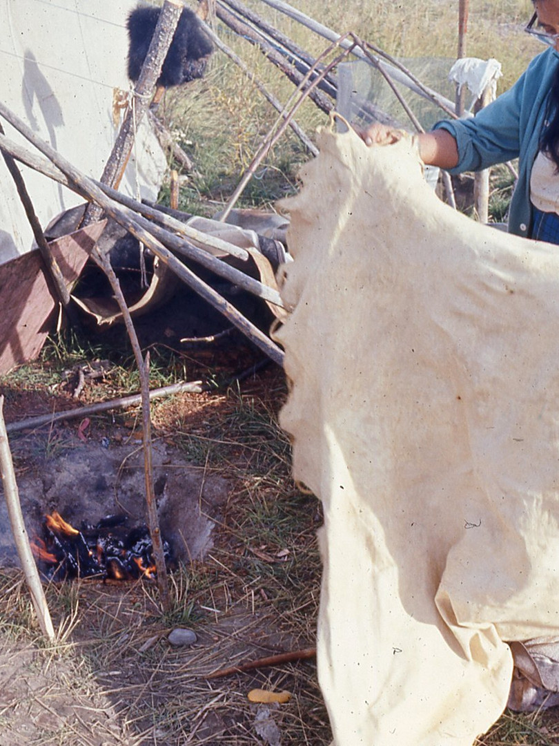 Ed Durgin - Tanning a moose hide at summ