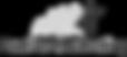 Evolve Logo_edited_edited_edited.png