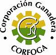 Corfoga.JPG