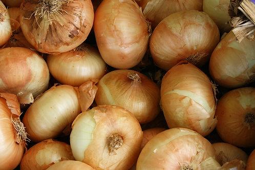 Organic White Onions (each) (£0.24/100g)